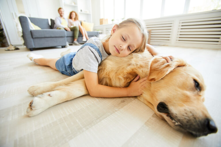 Cute little girl lying on her friendly purebred pet while both relaxing on the floor